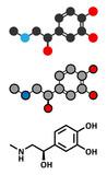 Adrenaline (adrenalin, epinephrine) neurotransmitter molecule.