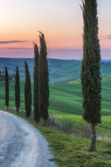 Magical journey fields of Tuscany © gentelmenit
