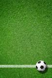Fußball auf Rasen - 108448351