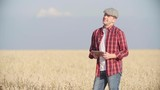 Farmer standing in wheat field with digital tablet and looking at his crop