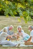 Senioren sitzen beim Picknick im Park