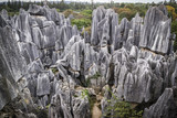 A detail from the stone forest in Kunming, Yunnan Province, China