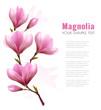 Obrazy na płótnie, fototapety, zdjęcia, fotoobrazy drukowane : Nature background with blossom branch of pink flowers and butter