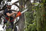 boscaiolo moderno con motosega in azione