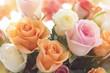 Obrazy na płótnie, fototapety, zdjęcia, fotoobrazy drukowane : Colorful Rose Bouquet