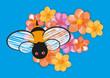 Obrazy na płótnie, fototapety, zdjęcia, fotoobrazy drukowane : A cute bee is flying above colored flowers on a blue background.