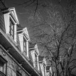 Montreal historic row houses