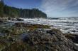 Sombrio Beach, Juan de Fuca Trail, Vancouver Island, British Col