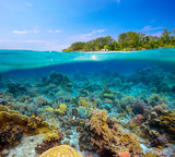 tropical beach on island Meno,Indonesia under and above water.