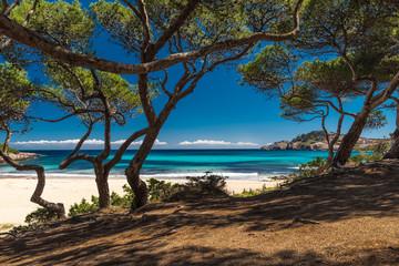 Traumstrand Cala Agulla Mallorca