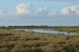 paisajes de marisma