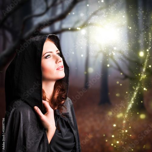 magische Begegnung im Wald Poster