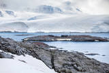 Nature and landscapes of the coast Antarctica, beautiful rocks, ocean.