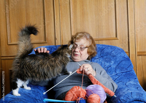 Poster The old woman sits in an armchair and stroke a cat