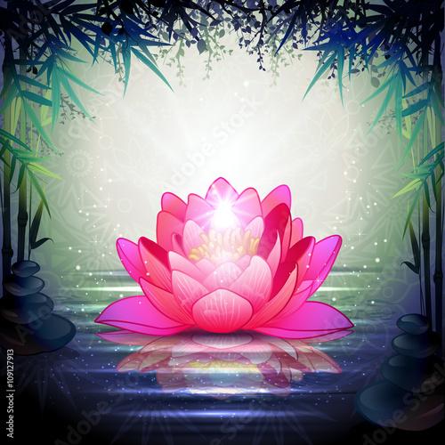 Lotus Flowers in a Zen Garden