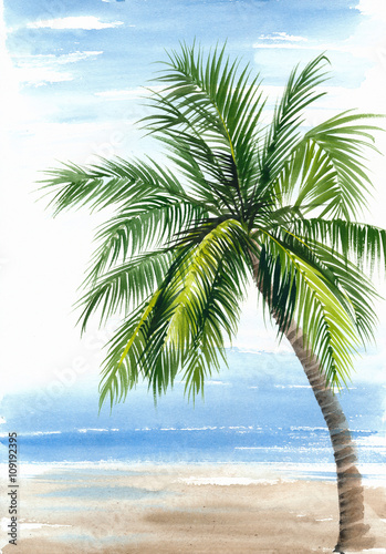 Fototapeta Tropical resort view with the seashore and coconut palm. Original watercolor painting.