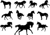 Horse, drawing, black, silhouette, symbol, illustration, image, picture, isola