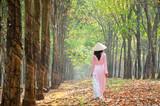 Vietnamese traditional dress (ao dai), Vietnam