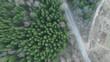 Obrazy na płótnie, fototapety, zdjęcia, fotoobrazy drukowane : Flying over the forest. Top view