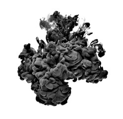paint in water color liquid black