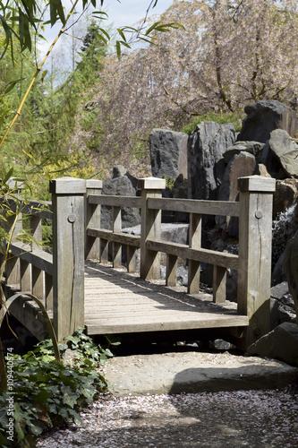 Fototapeta Spring in japanese garden - Frühling im japanischen Garten