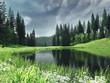 Krajobraz z jeziorem, lasem i wiosenną łąką
