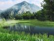 Górski krajobraz z jeziorem i zieloną łąką z wiosennymi kwiatami