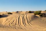car rally on Desert Safari