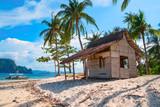 Tropical island landscape