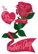 Obrazy na płótnie, fototapety, zdjęcia, fotoobrazy drukowane : Pretty Pink Rose with Ribbon Across for Mother's Day, Vector Illustration