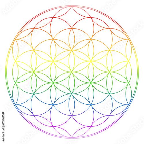 Blume des Lebens in Regenbogen Farben Verlauf Poster