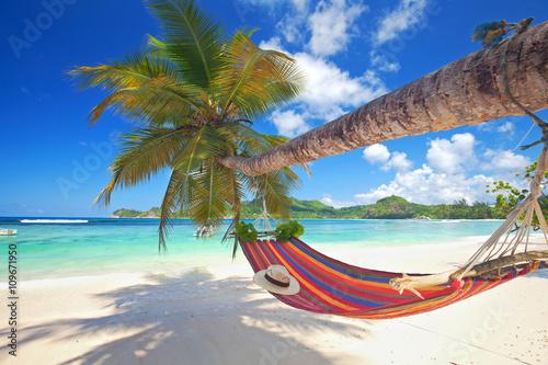 Plagát Sommer am Strand, Hängematte an einer Palme, Seychellen