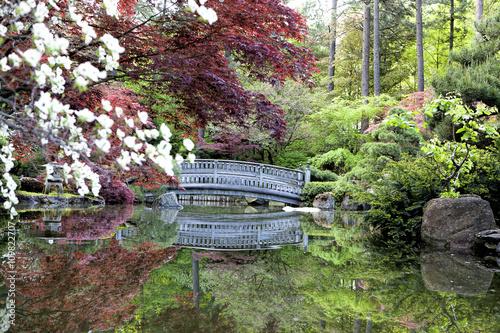 Fototapeta Zen like Japanese gardens.