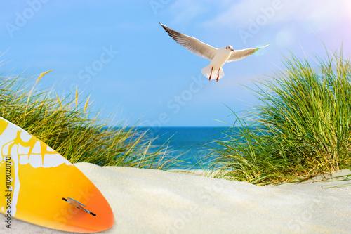 Leinwandbild Motiv Surfboard am Strand, mit Möwe