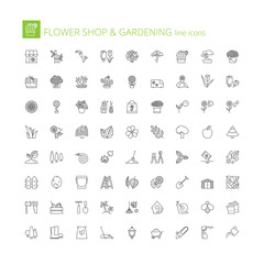 Line icons. Flower shop and gardening