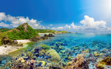 Coral reef on background tropical island
