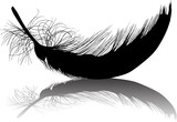 small feather curved black silhouette with shadow