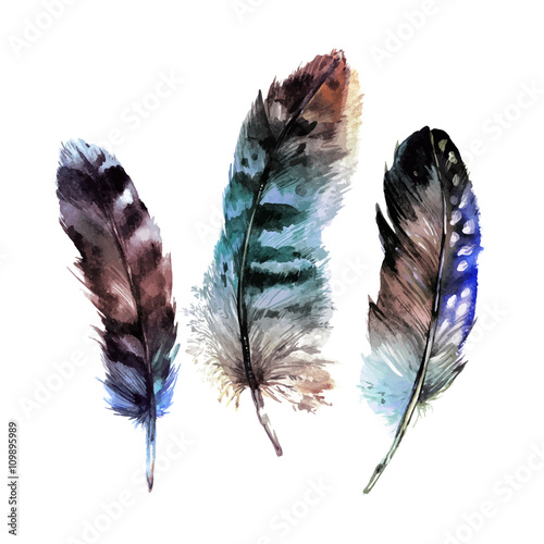 Watercolor Feathers Set - 109895989
