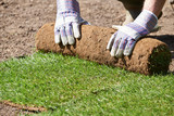 Close Up Of Landscape Gardener Laying Turf For New Lawn - 109928187