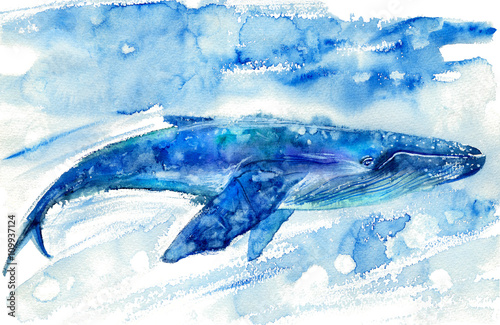 Big Blue Whale and water.Watercolor hand drawn illustration. Realistic underwater animal art. - 109937124