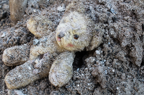 Teddy bear lies wounded on a pile of ash Poster