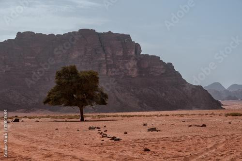 Poster Scenic view of Wadi Rum desert landscape,Jordan.