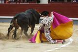 bull in the bullring