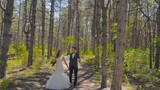 the bride and groom in the woods. Lovers walk in the woods