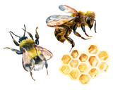 Watercolor bee, bumble bee and honeycomb set - 110266974