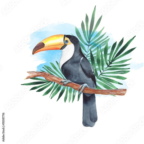 Toucan on branch. Watercolor illustration 4 - 110387716