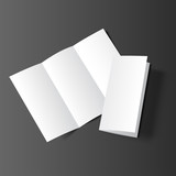Brochure blank mockup two black