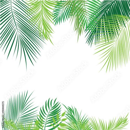 Tropikalny dżungli tło z drzewkiem palmowym i liśćmi.