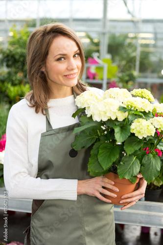 Zdjęcia na płótnie, fototapety, obrazy : Young attractive woman working at the plants nursery