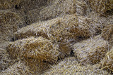 Straw in barn